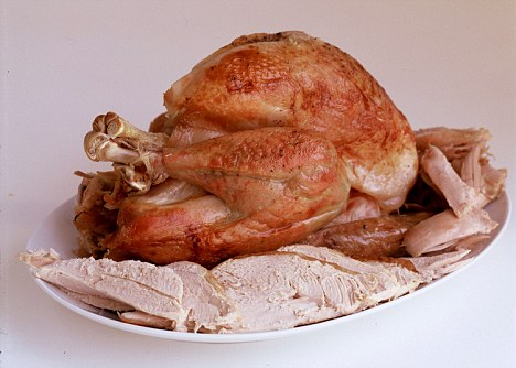 Howard Shooter Food for Femail christmas turkey