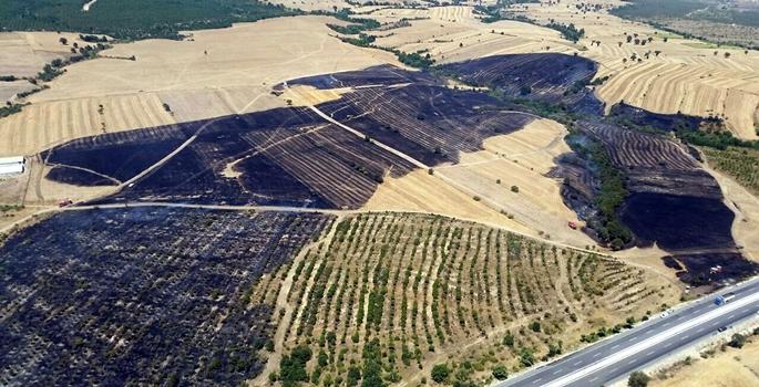 Çanakkale'nin Biga ilçesinde, Sinekçi köyü yakınlarındaki tarım arazisinde çıkan, rüzgarın da etkisiyle ormanlık alana sıçrayan yangın kontrol altına alındı. Yangında, yaklaşık 3 hektar ormanlık alan ile 30 hektar tarım arazisi zarar gördü. ( Çanakkale Orman Bölge Müdürlüğü - Anadolu Ajansı )