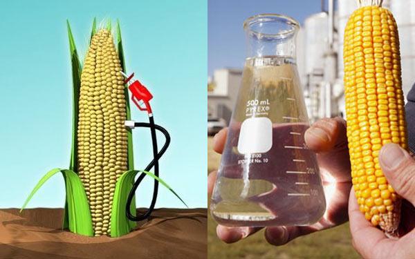 etanol-de-milho