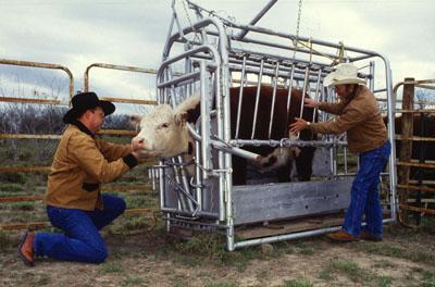 Farm Manager USDA ARS k5441-1 by Scott Bauer