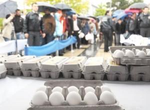 yagmur-altinda-yumurta-kuyrugu_7980_o