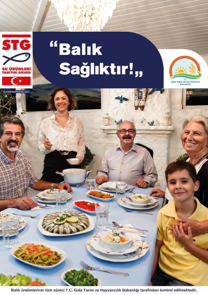 stg-kamu_afisleri-balik_sagliktir 4