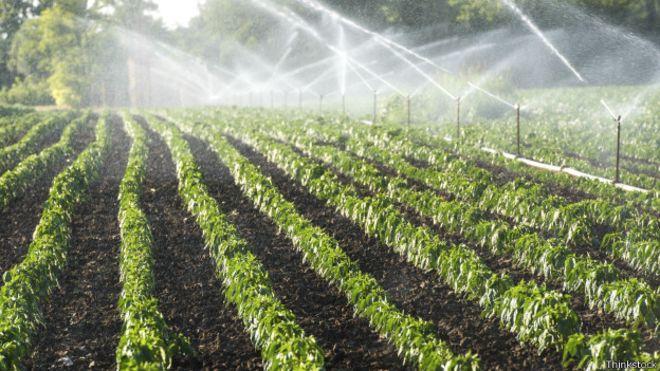150302144349_water_irrigation_624x351_thinkstock