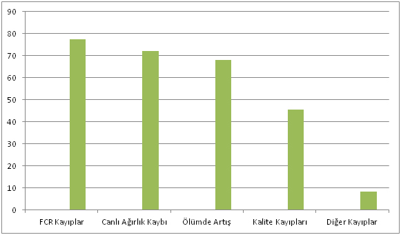 Grafik 5. BE'nin olumsuz ekonomik etkileri