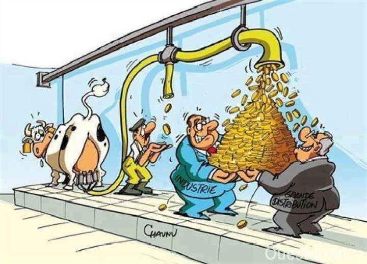 süt patronlari