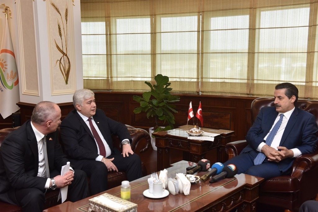 Gürcistan Büyükelçisi kabul 1