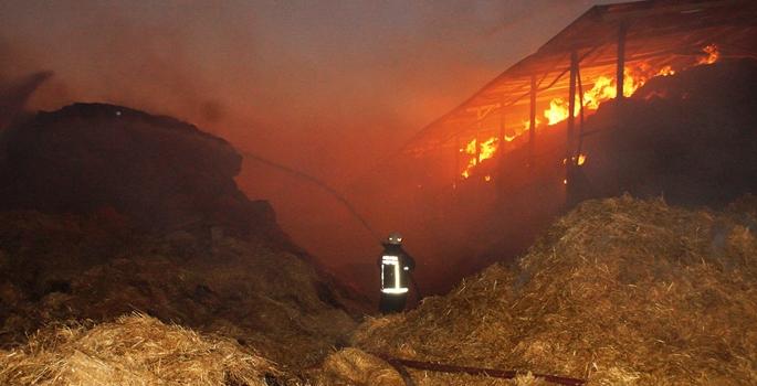 Ankara'nın Çubuk ilçesinde besicilik yapılan çiftlikte çıkan yangında,  bin 400 ton saman, bin ton silaj ürünü, çok sayıda yemlik ile depolar kül oldu.  ( Hüseyin Yiğiner - Anadolu Ajansı )