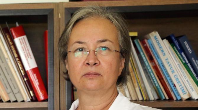 Prof.Dr. Tülin Aksoy,