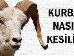 kurban_nasil_kesilir_islami_sartlara_uygun_sunnete_uygun_kurban_kesimi_nasil_yapilir_h1418