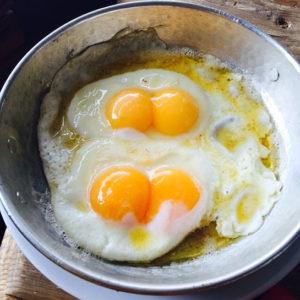 cift-sarili-yumurta