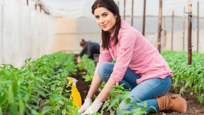 Genç Çiftçi Desteği'nde 5 Mayıs son gün